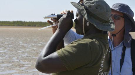 Restauration communautaire et écologique de la mangrove (CBEMR): rétablir un écosystème côtier plus riche en biodiversité et plus résilient avec la participation de la communauté