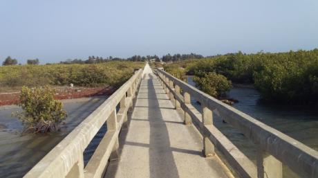 Pont de Djifer, Delta du Saloum, Sénégal