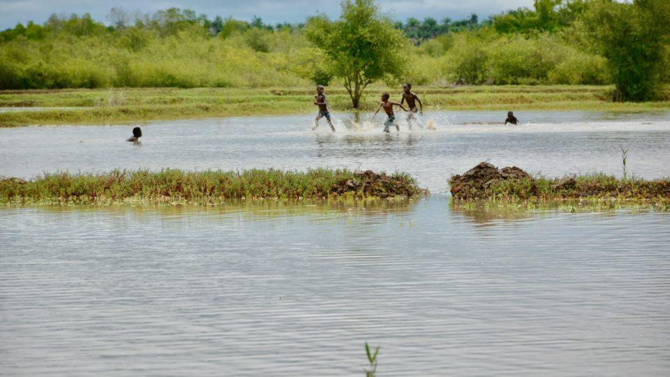 Site de restauration écologique guinée bissau
